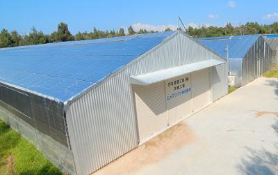ヒメマツタケ栽培・生産施設(建物)の写真